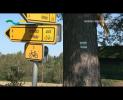 Cyklotrasy